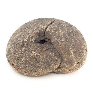 0039 P. P. Amonit MACROCEPHALITES MACROCEPHALUS, era mezozoiczna – Jura środkowa – 174 – 166 milionów lat temu, okolice Krzeszowic