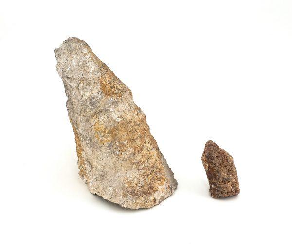 0357 P.P. Koralowiec AULOPHYLLUM FUNGITES, era paleozoiczna – Karbon - 358 – 329 milionów lat temu