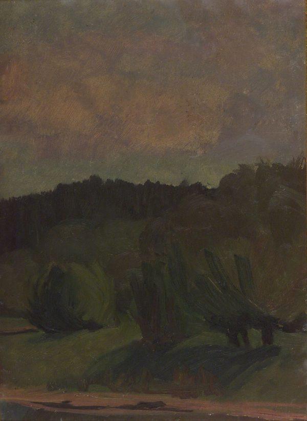 2412 AH autor Ignacy Pinkas, Pejzaż, 1915-18, olej dykta, 44x32, fot